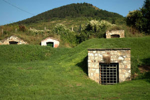 Traditional Tokaj winecellar in the Tokaj-Hegyalja region by Verita under a Creative Commons Attribution-Share Alike 3.0 unported license